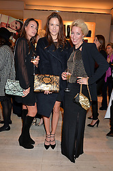 Left to right, TANYA SOUTHWORTH, FRAN HICKMAN and PRINCESS VALERIO MASSIMO DI ROCCASECCA at the Roger Vivier 'The Perfect Pair' Frieze cocktail party celebrating Ambra Medda & 'Miss Viv' at the Roger Vivier Boutique, Sloane Street, London on 15th October 2014.