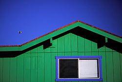 Stock photo of a green painted house with a bright blue window frame