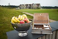 SPIJK - Fruitschaal met fruit, een een doos met tees en potloodjes, bij de eerste hole  van  Golfbaan THE DUTCH, COPYRIGHT KOEN SUYK