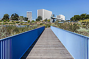 Blue Bridge at Newport Beach Civic Center and Park
