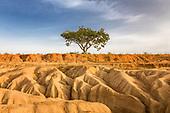 Northern Nigerian Erosion