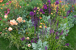 Geum 'Totally Tangerine' with Calendula 'Indian Prince', Allium 'Purple Sensation', Melica altissima 'Alba', Cerinthe major 'Purpurascens', Salvia nemorosa 'Caradonna' and rose.