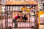 7th June 2013, Mumbai, India.   Children play inside a police barricade in the street near the Taj Mahal Palace Hotel, in Mumbai, India on the 7th June 2013<br /> <br /> PHOTOGRAPH BY AND COPYRIGHT OF SIMON DE TREY-WHITE<br /> <br /> + 91 98103 99809<br /> email: simon@simondetreywhite.com photographer in delhi photographer in delhi photographer in delhi