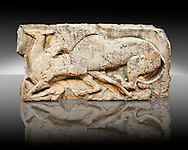 """Lion killing deer  from the """"Satyr Hunting Wils Animals, freezes, 460 B.C.  From Xanthos, UNESCO World Heritage site, south west Turkey. A British Museum exhibit GR 1848-10-20-2-9 (sculpture B 2902- 298). .<br /> <br /> If you prefer to buy from our ALAMY PHOTO LIBRARY  Collection visit : https://www.alamy.com/portfolio/paul-williams-funkystock/lycian-antiquities.html (TIP - Refine search by adding a suject or background colour as well).<br /> <br /> Visit our CLASSICAL WORLD HISTORIC SITES PHOTO COLLECTIONS for more photos to download or buy as wall art prints https://funkystock.photoshelter.com/gallery-collection/Classical-Era-Historic-Sites-Archaeological-Sites-Pictures-Images/C0000g4bSGiDL9rw"""