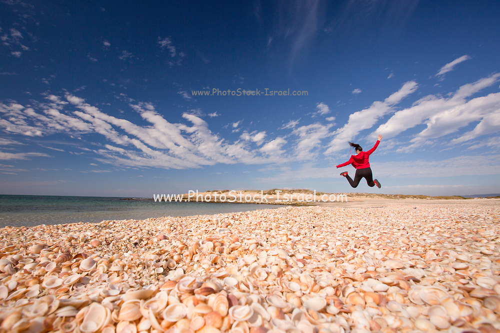 Young girl enjoys a sunny winter day on the seashore Seashells in the foreground