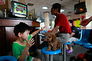 A boy plays with a puppy while his parents monitor their investments at a securities exchange house in Shanghai, China on 08 August 2011.  China's A shares had the biggest drop in a year following the global down turn as well as monetary tightening concerns in China.