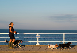 © Licensed to London News Pictures.10/10/2018. Aberystwyth, UK. A woman walks her dogs as autumn dawn breaks over Aberystwyth harbour on the west wales coast, heralding a day of warm sunshine for much of the UK.  Photo credit: Keith Morris/LNP