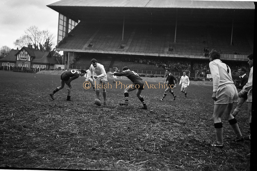 19/01/1963<br /> 01/19/1963<br /> 19 January 1963<br /> International Rugby Trials at Lansdowne Road, Dublin. Peddle (centre) kicks ahead between Blues players Marshall (left) and Leahy.