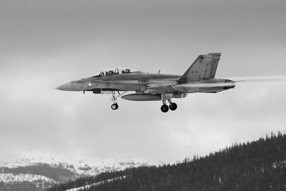 CF-18 Hornet black and white