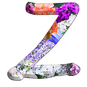 The Capitol Letter Z Part of a set of letters, Numbers and symbols of 3D Alphabet made with colourful floral images on white background