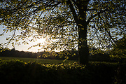 A setting sun on an English country landscape, on 5th May 2018, in Wrington, North Somerset, England.