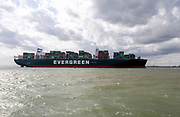 Evergreen Ever Govern one of the world's largest container ships making maiden call at Port of Felixstowe, Suffolk, England, UK - 17 Aug 2019