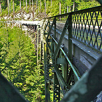 Taking in the evergreen trees coming up to reach the James R. O'Farrell Bridge on SR 165 all the way up from the Carbon River below. When opened in 1921, this was the highest bridge in WA state.