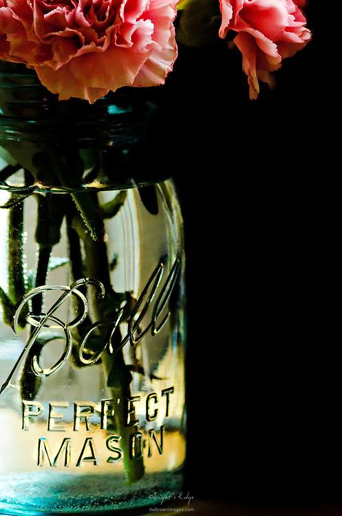 Carnations sitting in a Ball Perfect Mason jar.