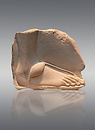 Ancient Egyptian relief study of a foot. 18th Dynasty 1345 BC . Neues Museum Berlin AM 20672.