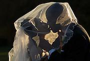 Melanie and Steven Logan's wedding in Ann Arbor, Michigan.
