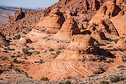 Explore colorful fossilized sand dune buttes in the Paw Hole section of South Coyote Buttes, in Vermilion Cliffs National Monument, Arizona, USA. The Coyote Buttes area exposes cross-bedded aeolian Jurassic Navajo Sandstone. Various iron oxides bled through the sandstone layers to create a salmon color; hematite and goethite added yellows, oranges, browns, and purples. For the required hiking permit, contact the US Bureau of Land Management (BLM, in Kanab, Utah). Access to this Federal public land is regulated to protect fragile geologic formations. Coyote Buttes are within Vermilion Cliffs National Monument (established in 2000 within Arizona), which is within Paria Canyon-Vermilion Cliffs Wilderness Area (established in 1984 spanning across the borders of Utah and Arizona).