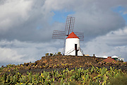 Windmill at Jardin de Cactus designed by César Manrique, Guatiza, Lanzarote, Canary Islands, Spain