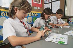 Primary school children looking at specimens in biology class,