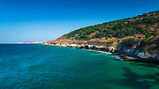 Torrey Pines and Skunk Point, Santa Rosa Island, Channel Islands National Park, California USA
