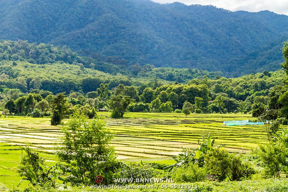 THA/Bangkok/20160729 - Vakantie Thailand 2016 Bangkok, natuur uitzicht, vergezicht