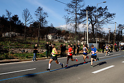 November 11, 2018 - Athens, Greece - Participants run past a burnt area of Mati village, where 99 people died in a forest fire last summer, during the 2018 Athens Marathon. (Credit Image: © Aristidis VafeiadakisZUMA Wire)