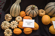 WINTER SQUASH, Cucurbita spp. Researcher: Alex Stone, Oregon State University<br />Chef: Timothy Wastell<br />Dish: Hull-less Pumpkin Seed Oil Ice Cream, Caramelized Pumpkin Juice & Crushed Seeds