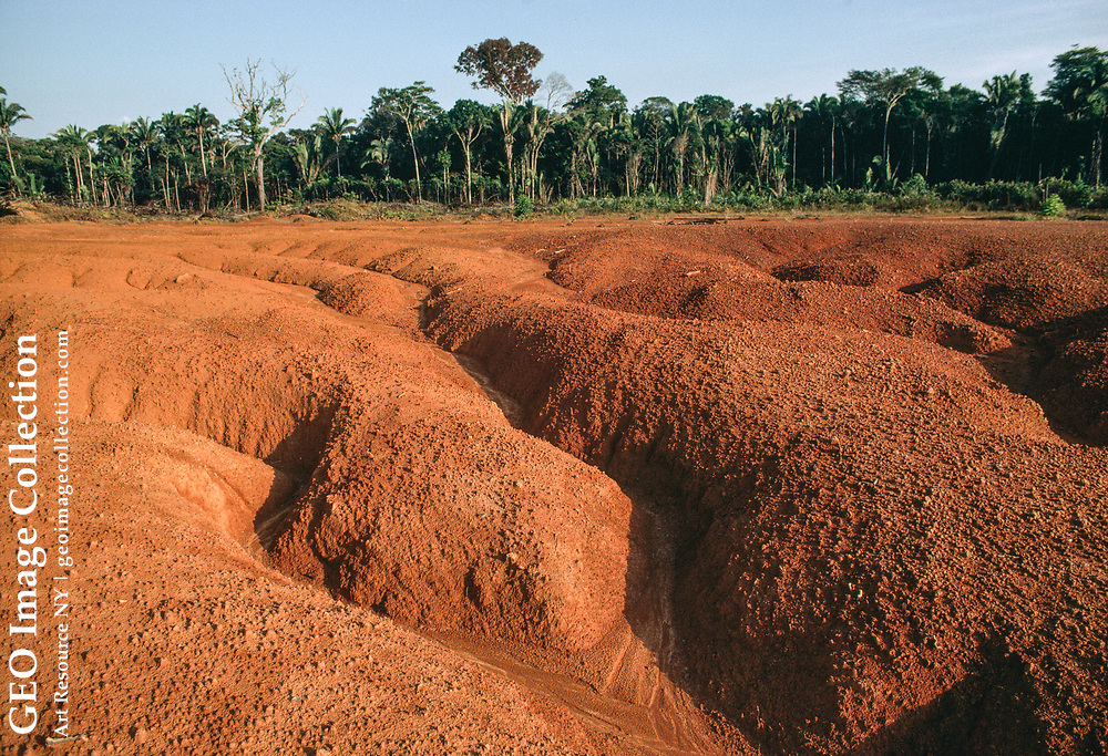Good example of erosion caused by the clearing of rain forest to make pastures. After only a few years, the pastures lose productivity, prompting more forest destruction.  Laterite, or oxidized metals in the soil, cause the dirt to turn red. Primary rain forest thrives in the background.