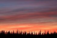 Sunset along the Tanana River in Nenana, Alaska on January 16, 2020.