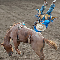 2015 Vale Rodeo