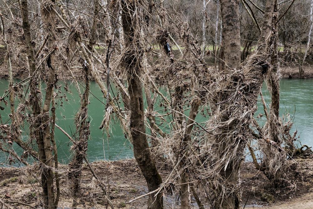 Clinch River, VA 20.02.26