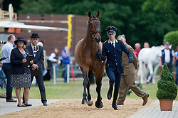 Benjamin Winter (GER) & Wild Thing Z - First Horse Inspection - CCI4* - Luhmuhlen 2014 - Salzhausen, Germany - 11 June 2014