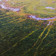 The channels of tide lines exposed at low tide along the Cook Inlet near Anchorage Alaska.