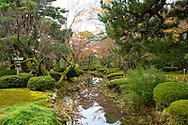 A stream reflecting autumn foliage on Prunus in the Kenrokuen Garden, Kanazawa, Japan