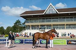 Sanne Voets, (NED), Vedet Pb - Horse Inspection Para Dressage - Alltech FEI World Equestrian Games™ 2014 - Normandy, France.<br /> © Hippo Foto Team - Jon Stroud<br /> 25/06/14