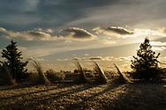 Sunset in Bennet, Nebraska. Photo by Aaron Babcock