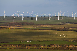 Windfarm Anglesey Wales