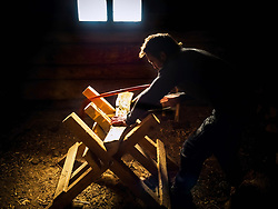 Mature man sawing a plank of wood