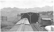 String of house cars partly in snowshed on Lizard Head siding with speeder shed to one side.  A fragment of a Wayne-bodied Goose's roof can be seen at the right.  All viewed from atop a car.<br /> RGS  Lizard Head, CO  ca. ? 1948