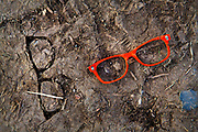 Glastonbury Festival, 2015. Glasses left in the mud.