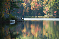 Fall foliage in the Lakes Region.  Karen Bobotas for the Laconia Daily Sun
