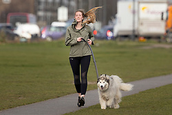 © Licensed to London News Pictures. 11/03/2021. London, UK. A woman walks her dog on a windy Blackheath Common in South East London. A yellow weather warning for wind is in place in parts of the UK. Photo credit: George Cracknell Wright/LNP