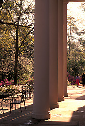 Stock photo of columns forming a striking contrast agains a natural backdrop at Bayou Bend.
