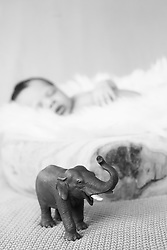 Close-up of cute newborn baby girl sleeping, Fuerstenfeldbruck, Bavaria, Germany