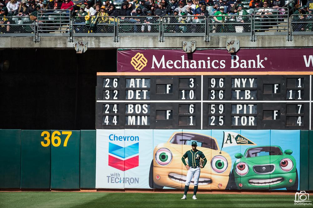 Oakland Athletics left fielder Matt Joyce (23) watches game play against the San Francisco Giants from left field at Oakland Coliseum in Oakland, California, on March 25, 2018. (Stan Olszewski/Special to S.F. Examiner)