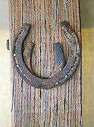 Horseshoes nailed to a wooden post at an eco campsite in the Gawler Ranges National Park, South Australia, Australia