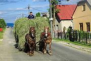 Slovakia, Banska Bystrica region, Horses and cart