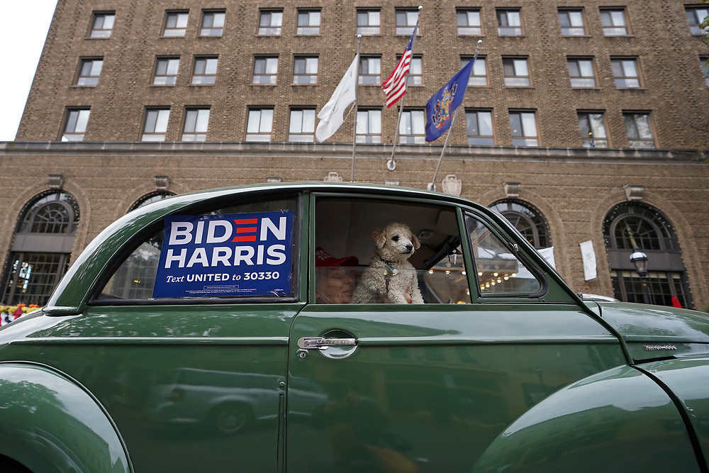 """A dog looks out from a car as United Steelworkers Local 2599 hosted a """"Ridin' 4 Biden Ticket Caravan"""" on Oct. 25, 2020, down Main Street in Bethlehem, Northampton County, Pennsylvania. Northampton County is a crucial region for Presidential candidates looking to win Pennsylvania as the county went for Obama in 2012 and then for Trump in 2016. (Photo by Matt Smith)"""