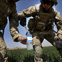 British soldiers of 16 Air Assault Bde's elite BRF (Brigade Reconnaissance Force) examine fertiliser found whilst searching fields and compound as part of an operation in the village of Kakaran in Helmand Province, Southern Afghanistan on the 14th of March 2011.