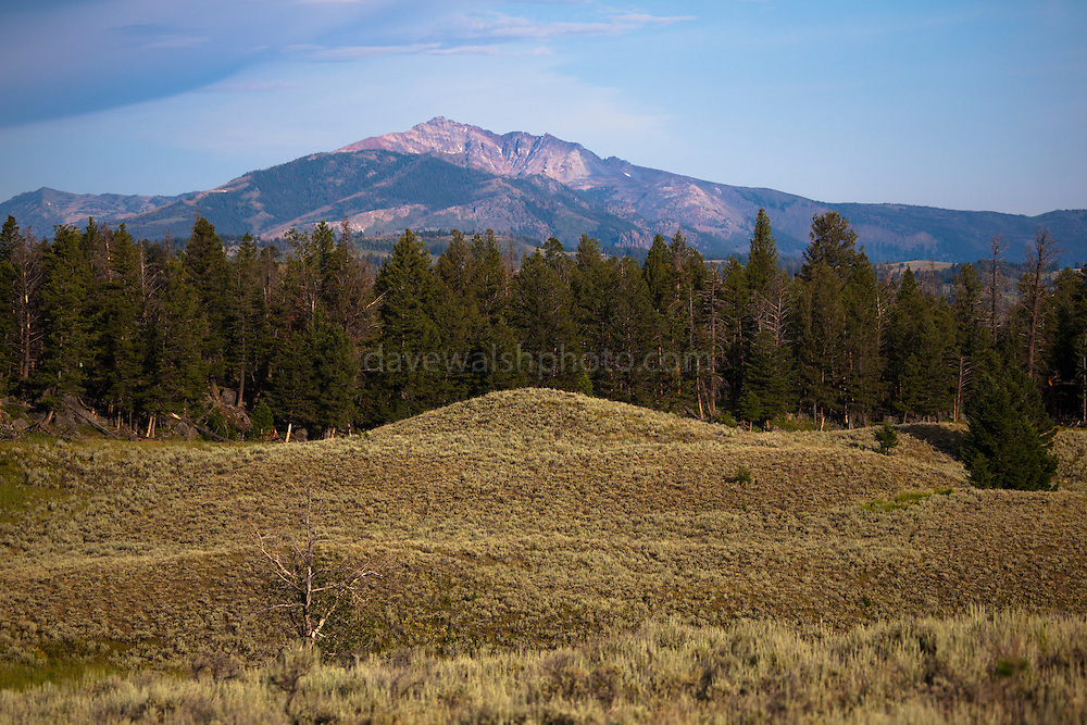 Morning view of the dramatic 3343m Electric Peak, in in Montana, seen from the Blacktail Deer Plateau, Yellowstone National Park, Wyoming. The mountain is named for the amount of thunderstorms it attracts.